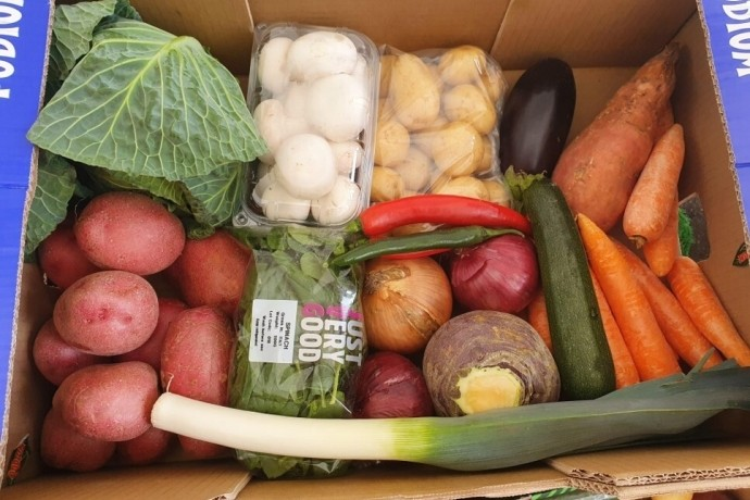 vegetable-boxes
